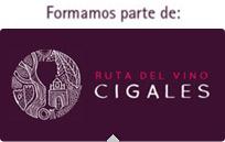 Ruta del vino de Cigales